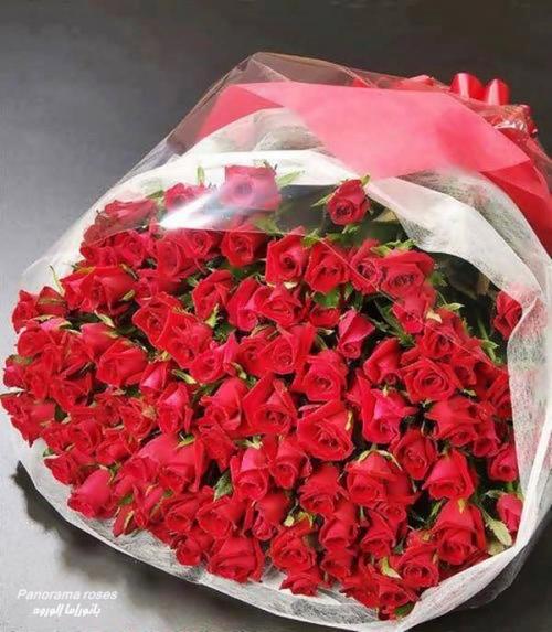 Цветы и картинки для поздравления с днем рождения